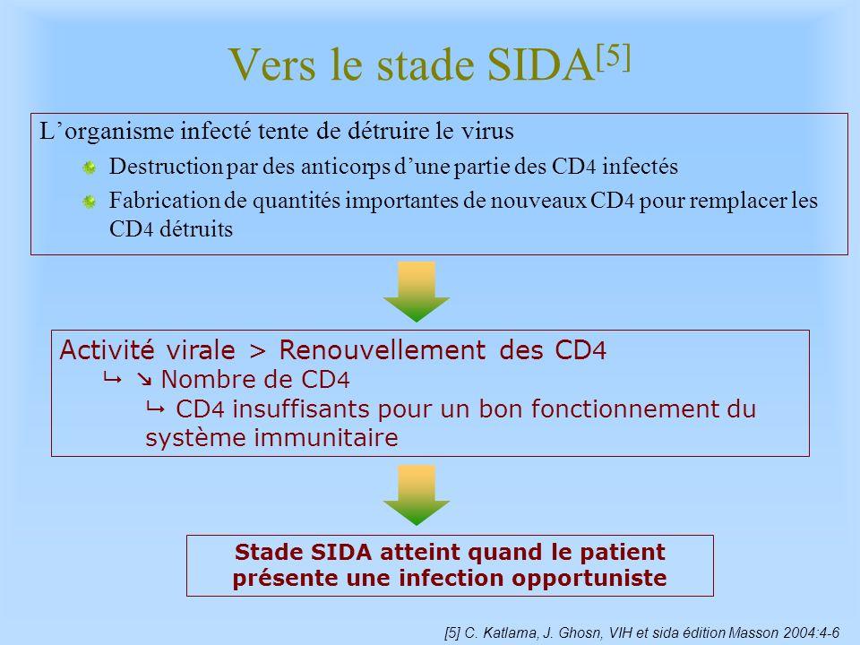 Vers le stade SIDA[5] L'organisme infecté tente de détruire le virus